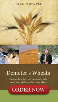 Book Coming Soon: Demeter's Wheats