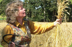 Sharon Rempel, Heritage Wheat Expert